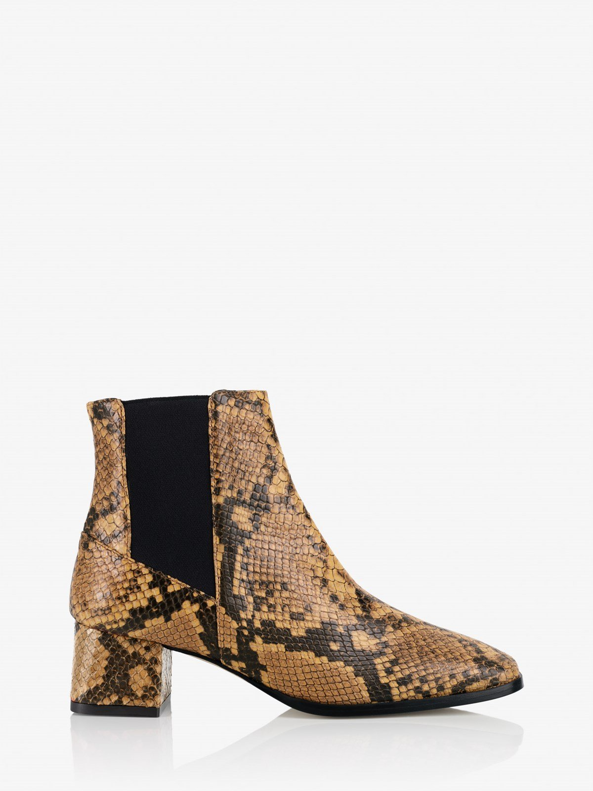 Cicoria Terra Ankle boots