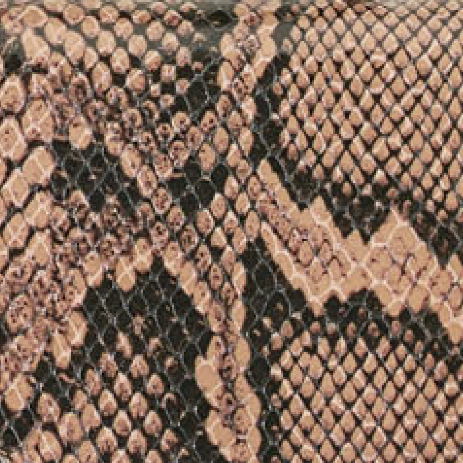 Brown Printed Snake